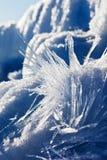蓝色冬天横向 库存照片