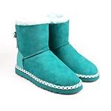 蓝色冬天鞋子 库存图片