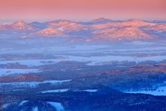 蓝色冬天风景、桦树森林有雪的,冰和霜 在日出前的桃红色早晨光 冬天微明,冷的自然 免版税库存图片
