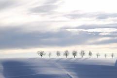 蓝色冬天风景 免版税库存图片