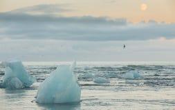 蓝色冰山和海 免版税库存照片