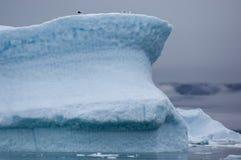 蓝色冰山在格陵兰 免版税库存照片