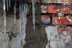 蓝色冰柱对肮脏的墙壁 免版税库存照片