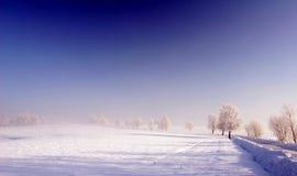 蓝色冻结的草甸天空 免版税库存照片
