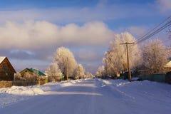 蓝色分行休息日霜谎言天空雪结构树冬天 村庄街道 免版税库存图片