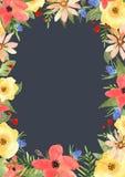 蓝色卡片设计花卉问候 您的文本的框架与在waterc的花 库存图片