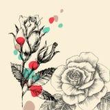 蓝色卡片设计花卉问候 库存例证