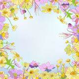 蓝色卡片设计花卉问候 图库摄影