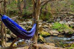 蓝色吊床在有一条小河的森林 免版税库存照片