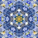 蓝色同心花中心。坛场万花筒设计 免版税库存照片
