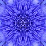 蓝色同心花中心坛场万花筒设计 库存照片