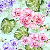 蓝色和桃红色兰花开花与概述,并且大绿色monstera在浅兰的背景离开 无缝的模式 皇族释放例证