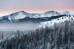 蓝色和桃红色天空在冬天 免版税库存照片