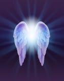 蓝色和淡紫色天使在黑暗的背景飞过 库存照片