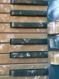 蓝色和白色真珠色的手风琴2 免版税库存照片