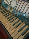 蓝色和白色真珠色的手风琴6 免版税图库摄影