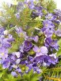 蓝色和白色银莲花属花花束  免版税库存照片