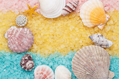 蓝色和黄色腌制槽用食盐和贝壳背景 免版税库存图片