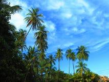 蓝色和绿色天空 免版税库存图片