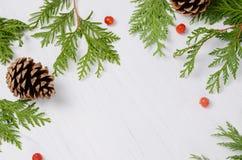 蓝色圣诞节框架魔术 杉树分支和在白色背景的花楸浆果 顶视图构成 免版税库存图片