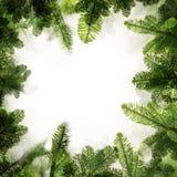 蓝色圣诞节框架魔术 绿色Xmas树背景边界  免版税库存图片