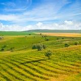 蓝色域绿色天空 一老riv形成的美丽如画的小山 免版税库存照片