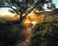 蓝色多云域草绿色早晨天空春天 一条美丽如画的河 库存照片