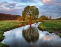 蓝色多云域草绿色早晨天空春天 一条美丽如画的河 免版税图库摄影