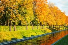 蓝色多云秋天域横向偏僻的天空结构树黄色 沿城市渠道的金黄秋天树在秋天晚上 免版税库存照片