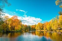 蓝色多云秋天域横向偏僻的天空结构树黄色 秋天公园、湖、叶子和太阳 免版税图库摄影