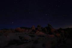 蓝色夜空在约书亚树国家公园 免版税库存照片