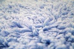 蓝色大长的毛皮 免版税库存照片