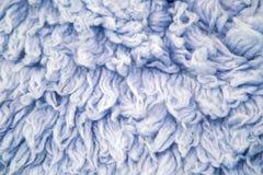 蓝色大长的毛皮 免版税图库摄影