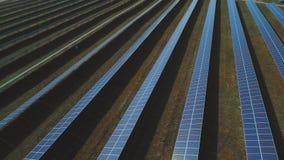 蓝色太阳电池板植物  射击在寄生虫 股票视频