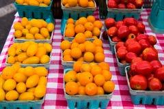 蓝色夸脱容器行特写镜头在一张白色和红色方格的桌布的小红色和黄色蕃茄 库存图片