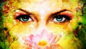 蓝色妇女注视放光迷惑从开花的ro的后面 库存图片