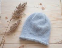 蓝色安哥拉猫软的盖帽  免版税库存图片