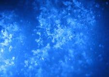 蓝色宏观雪 免版税库存图片