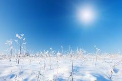 蓝色小山天空雪 库存图片