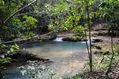 蓝色小河在森林里 免版税库存图片