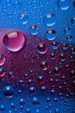 蓝色小滴桃红色水 免版税库存照片