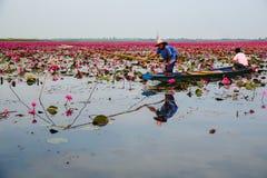 蓝色小船渔的女渔翁通过使用钓鱼传统fi 免版税库存照片