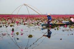 蓝色小船渔的女渔翁通过使用钓鱼传统fi 库存照片