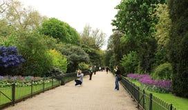 蓝色小船覆盖海德湖伦敦公园蛇纹石英国天空的结构树 库存照片