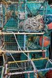 蓝色小龙虾和龙虾笼子 图库摄影