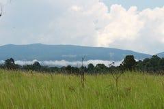 蓝色山和云彩和草甸 免版税图库摄影