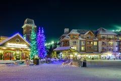 蓝色山村在冬天 库存照片