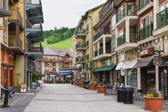 蓝色山村在夏天, Collingwood,加拿大 免版税库存照片