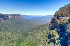 蓝色山,澳洲 免版税库存照片