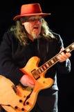蓝色弗隆魅力吉他弹奏者少女travis 免版税库存照片